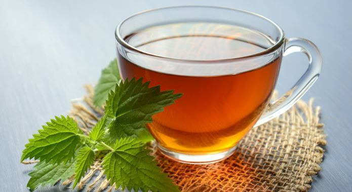 Green Tea Is Beneficial In The Morning, Harmful After Meals Or At Night