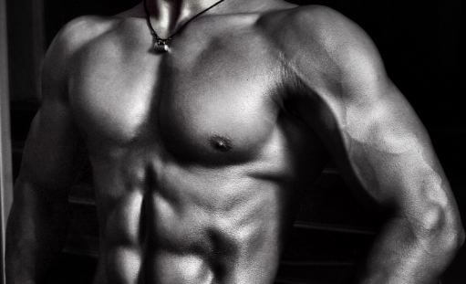What is popular muscle